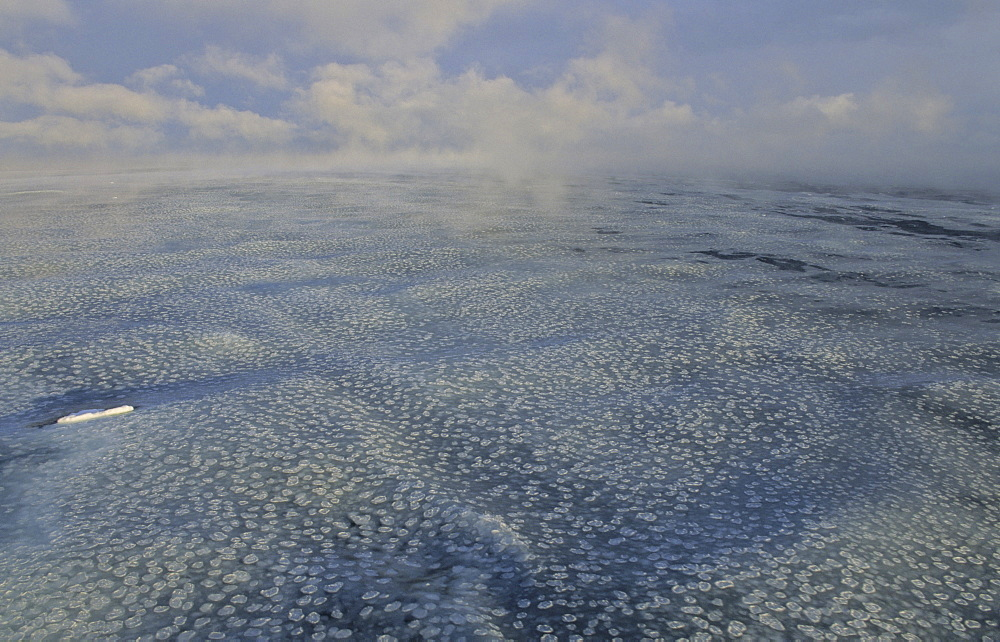 A steaming sea with grease ice and small pancake ice. Nearby Ross Island, Ross Sea, Antarctica.