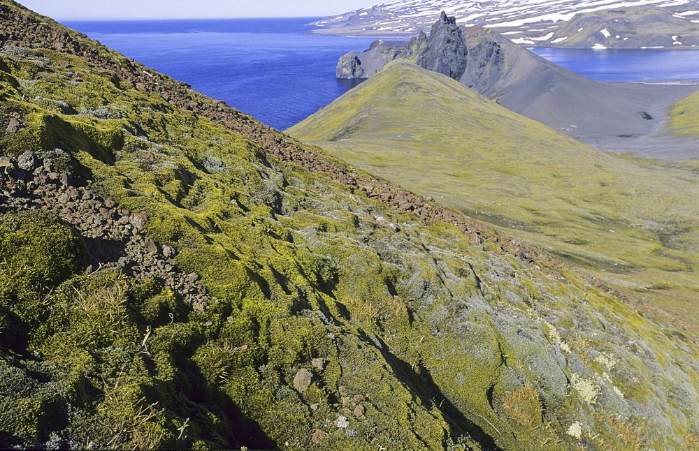 View from Danielssenkrateret towards Northeast and Mt Beerenberg, 2277m. Jan Mayen, North Atlantic Island - 909-135