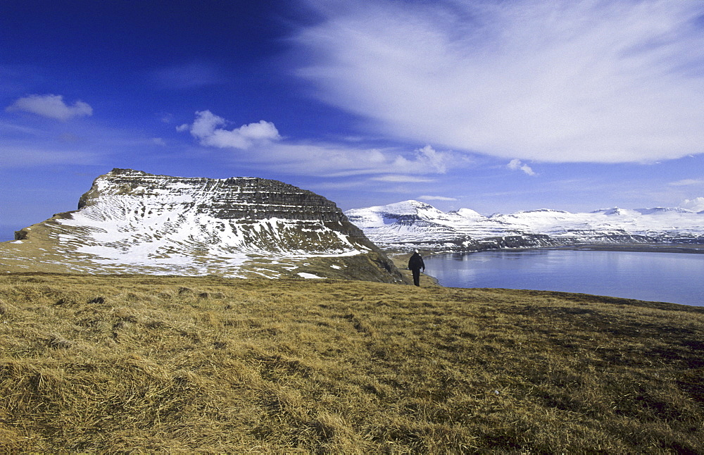 View from Hornbjarg towards Hornvik Bay. Northern Iceland. - 909-147