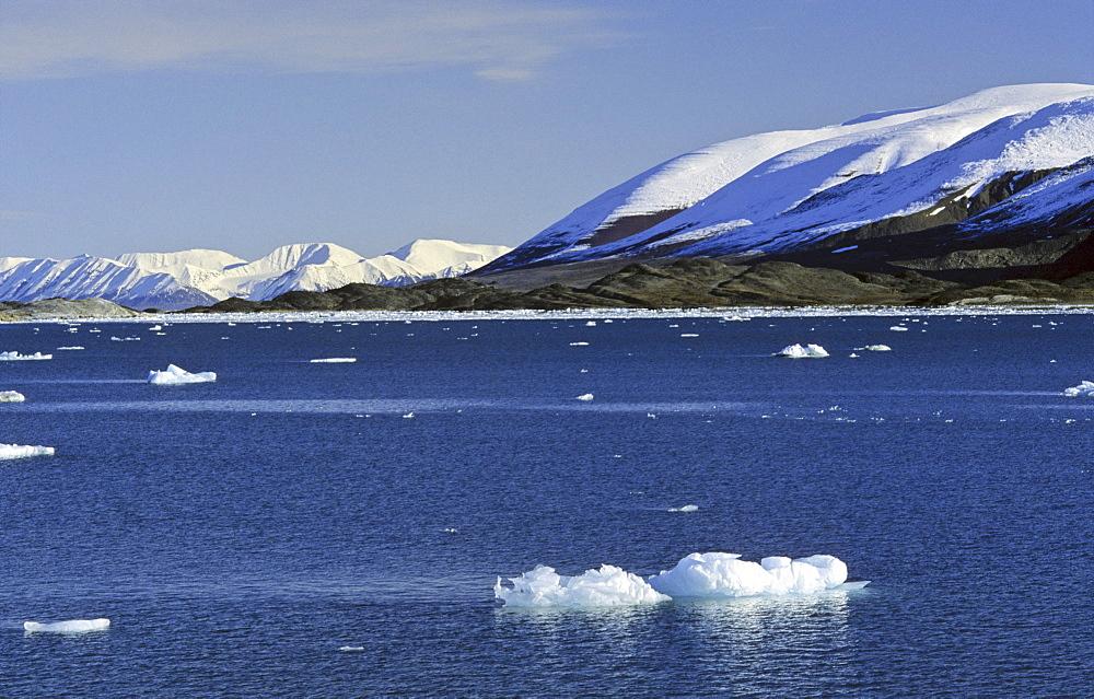 LernerØyane in Liefdefjorden. Northern Spitsbergen  - 909-92