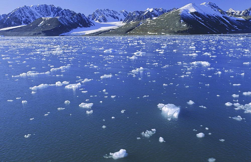 Emmabreen in Liefdefjorden. Northern Spitsbergen  - 909-94