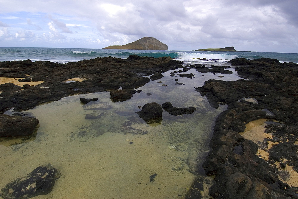 Tide pool and Manana Ialnd (Rabbit Island), Oahu, Hawaii, United States of America, Pacific
