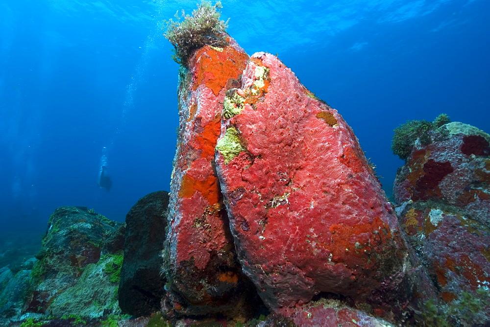 Image result for pedras secas