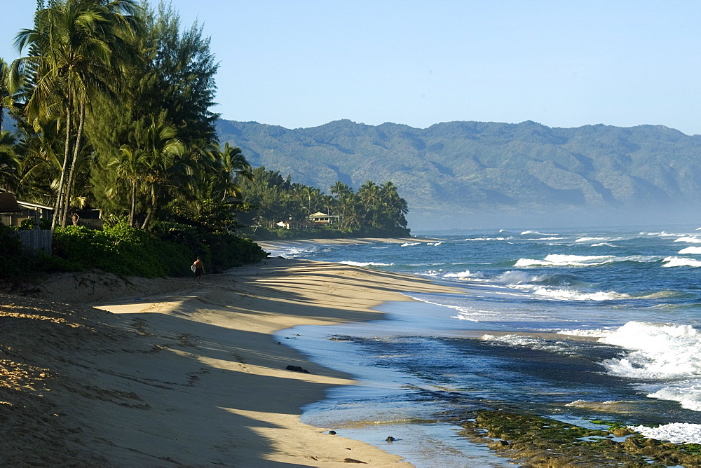 North shore's lush coastline in winter, Oahu, Hawaii, United States of America, Pacific