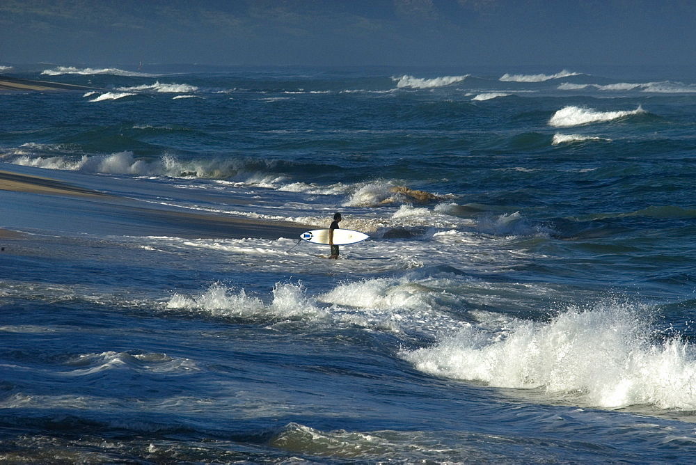 Surfer enters rough sea, North shore, Oahu, Hawaii, United States of America, Pacific