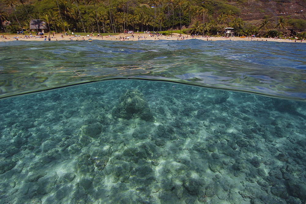 Split image of sandy substrate and beach, Hanauma Bay, Oahu, Hawaii, United States of America, Pacific