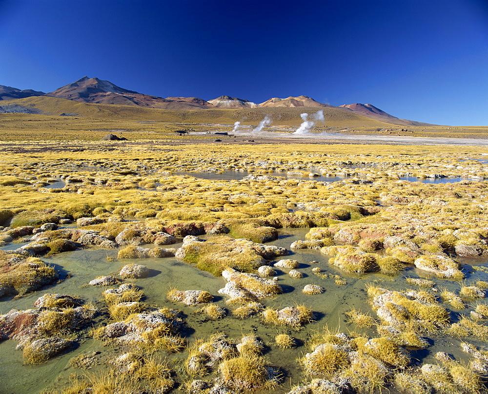 El Tatio Geyser in the San Pedro de Atacama, Chile, South America