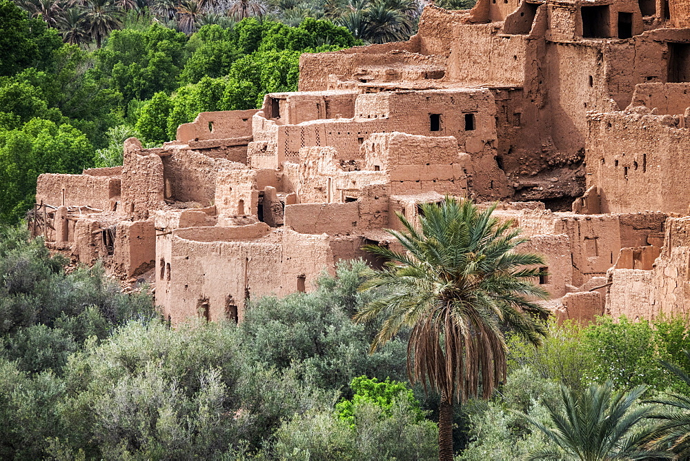 Village and palms in Morocco, North Africa, Africa