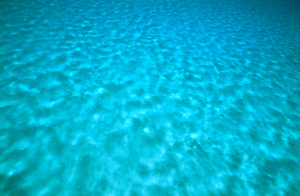 Blue under water scenic.