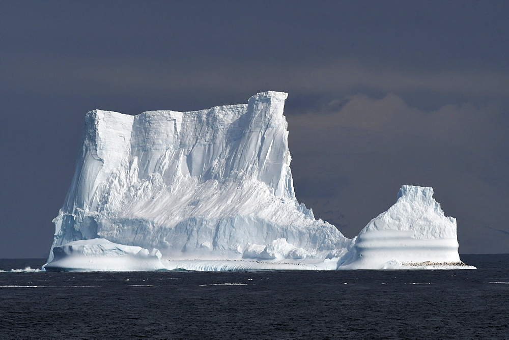 Iceberg with penguins against a blue sky, South Sandwich Islands, Polar Regions