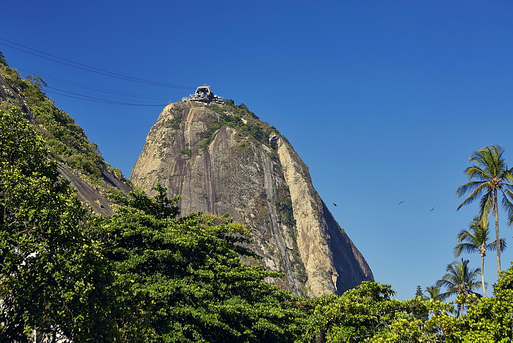Views of Sugarloaf mountain (Pao de Acucar), early evening, Rio de Janeiro, Brazil, South America - 975-299