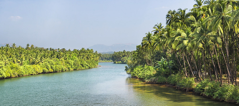 River at Palolem, Goa, India, Asia
