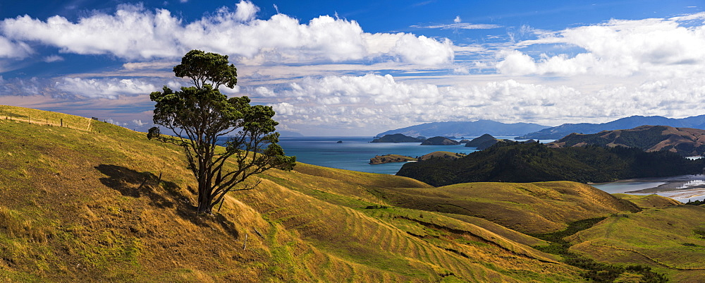 West Coast of Coromandel Peninsula, New Zealand North Island - 1109-3603
