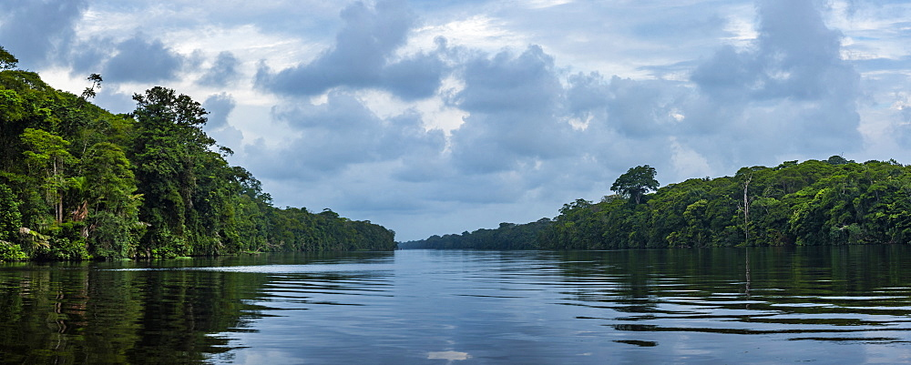 Tortuguero National Park, Limon Province, Costa Rica, Central America - 1109-4130