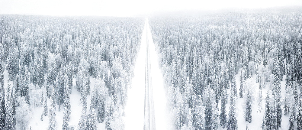 Elevated panoramic view of road along the snow covered forest, Pallas-Yllastunturi National Park, Muonio, Lapland, Finland (Drone)