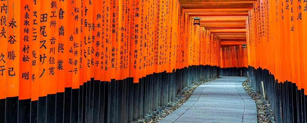 Fushimi Inari Taisha shrine and torii gates - 1186-816