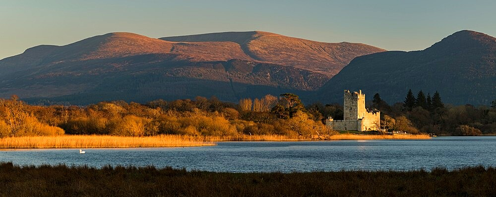 Ross Castle in the evening sunlight, Killarney. - 1200-438