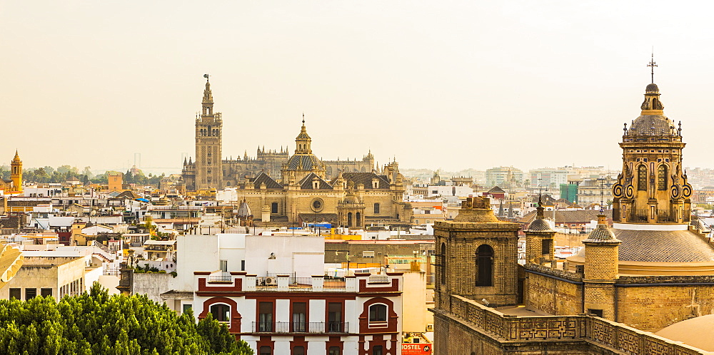 The view of the city and Seville Cathedral from the top of Metropol Parasol, Seville, Andalucia, Spain, Europe - 1207-240