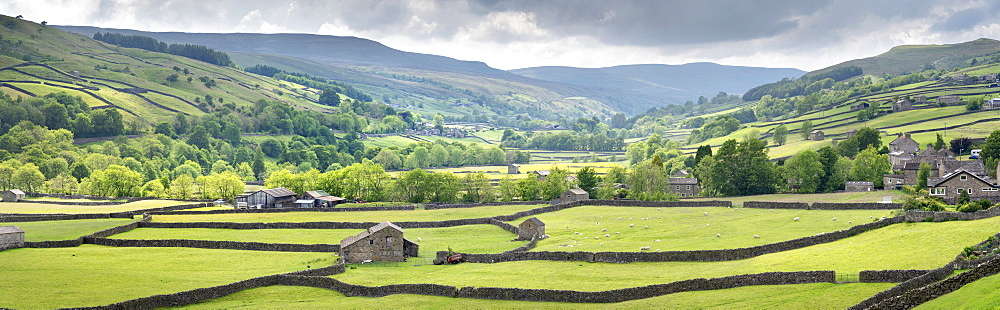 Dales out barns and dry stone walls at Gunnerside in Swaledale, The Yorkshire Dales National Park, UK. - 1228-254