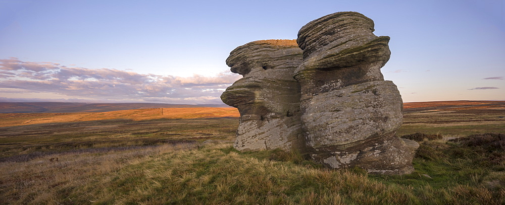 Jenny Twigg and her daughter Tibb, Gritstone rock formations on Fountains Earth Moor, Nidderdale, North Yorkshire, Yorkshire, England, United Kingdom, Europe - 1266-157