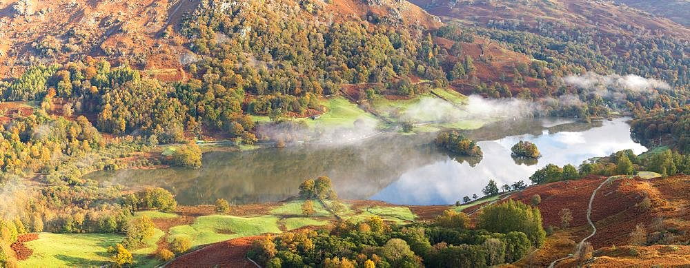 Autumn colour and early morning mist at Rydal Water, seen from Loughrigg Fell, English Lake District, Cumbria - 1266-177