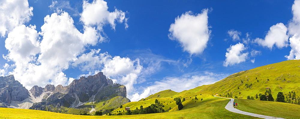 Panoramic view of pasture near Forcella de Furcia. Longiarù, Badia Valley, South Tyrol, Dolomites, Italy, Europe. - 1269-292