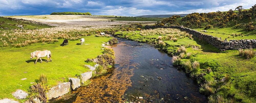 Dartmoor landscape, Devon, England, United Kingdom - 1272-66