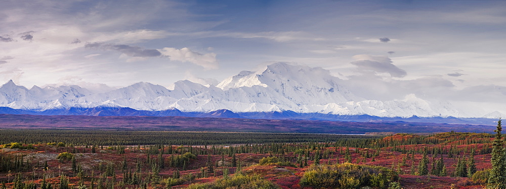 Panoramic landscape of the Denali Mountain (Mount McKinley), Denali National Park, Alaska, United States of america, North America - 1275-59