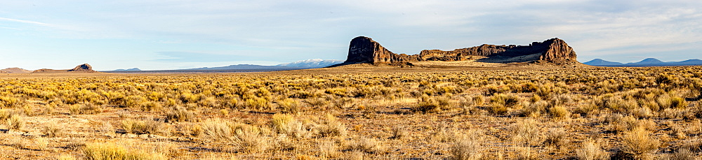 A panorama of sagebrush and rock formations in front of mountains, Oregon, United States of America, North America - 1289-7