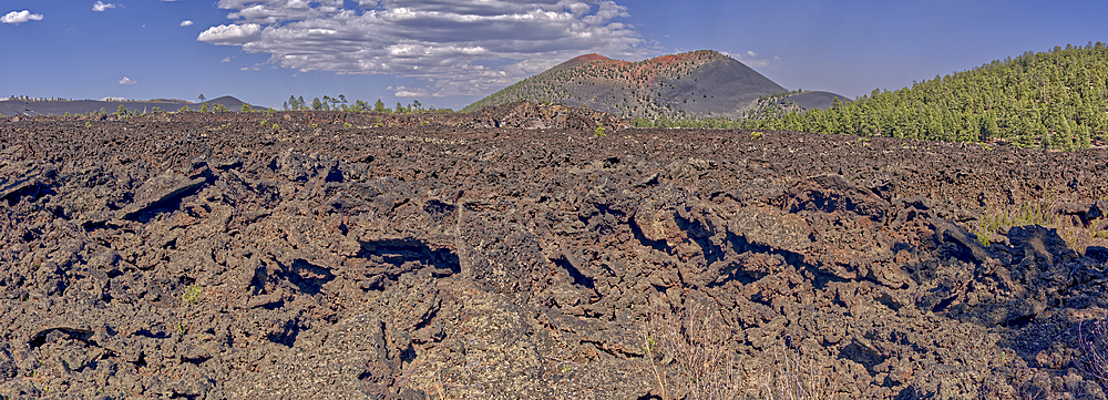 Panorama of the western Bonito Lava Field at Sunset Crater Volcano, Arizona, United States of America, North America - 1311-121