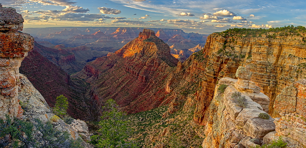 Panorama of Grand Canyon viewed from Buggeln Point just east of Buggeln Hill on the South Rim around sundown, Grand Canyon National Park, UNESCO World Heritage Site, Arizona, United States of America, North America - 1311-170