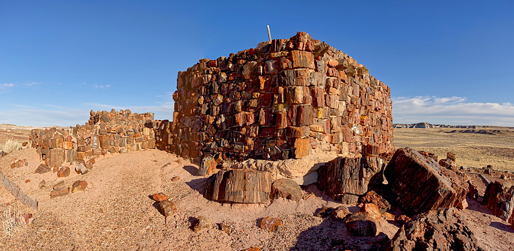 An Indian dwelling in Petrified Forest National Park called the Agate House, built between 1030AD and 1300AD, Arizona, United States of America, North America - 1311-191