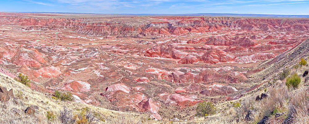 Panorama view of the Painted Desert from Tawa Point in Petrified Forest National Park, Arizona, United States of America, North America