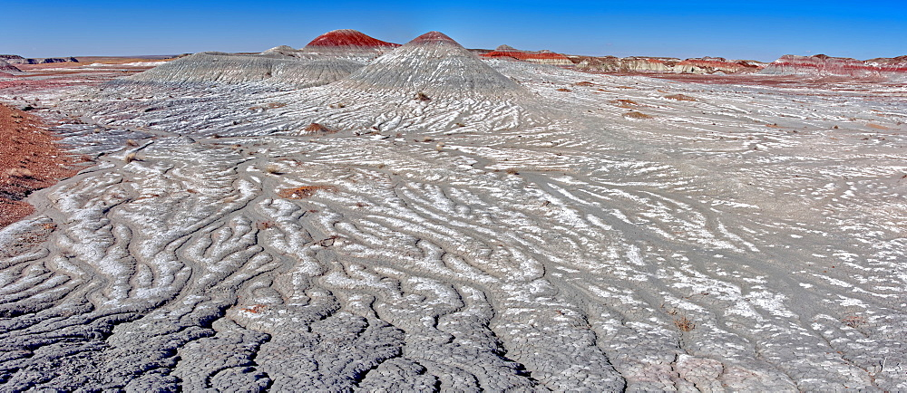 Salt covered hills of Bentonite in the Petrified Forest National Park along the Blue Forest Trail, Arizona, United States of America, North America - 1311-225