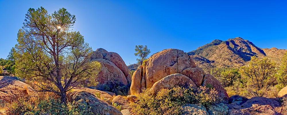 Giant boulders along Trail 345 in the Granite Mountain Recreation Area of the Prescott National Forest. - 1311-270