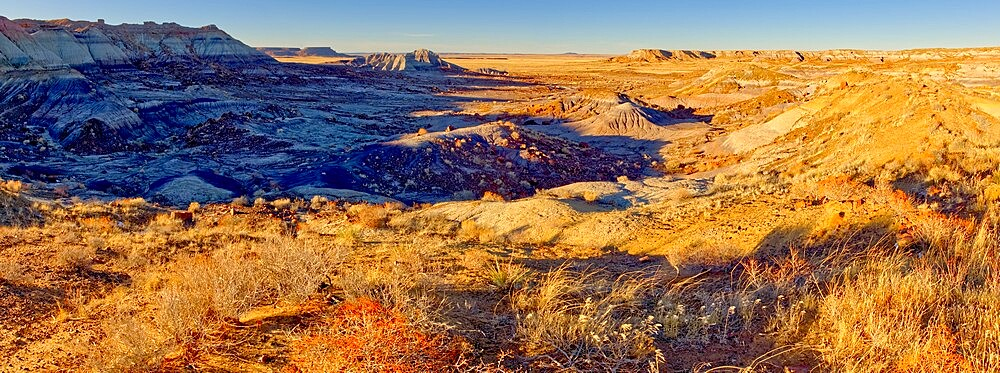 Panorama of the First Forest in Petrified Forest National Park, Arizona, United States of America, North America - 1311-280