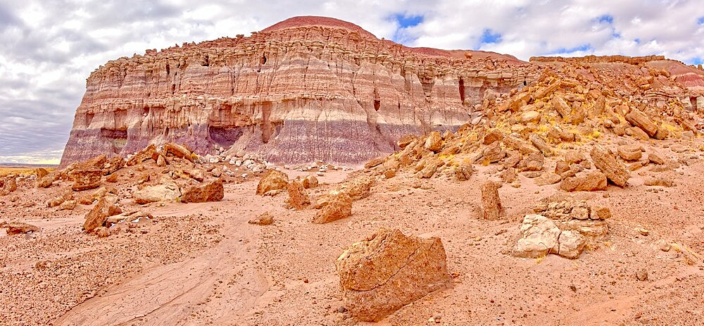 The eastern edge of the Clam Bed Mesa along the Red Basin Trail in Petrified Forest National Park, Arizona, United States of America, North America - 1311-284