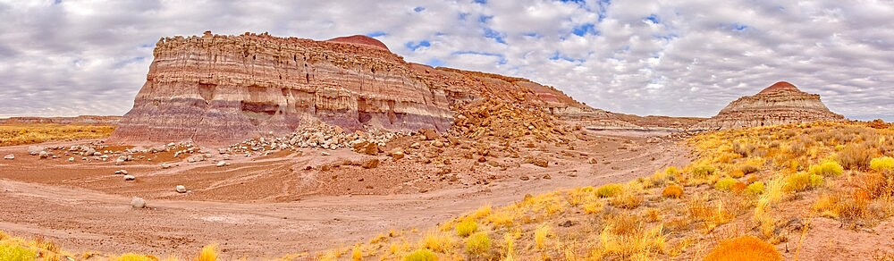 The eastern edge of the Clam Bed Mesa along the Red Basin Trail in Petrified Forest National Park, Arizona, United States of America, North America - 1311-285