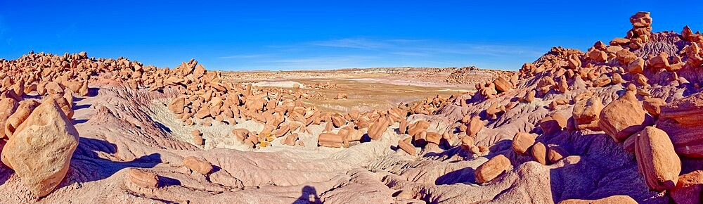 Panorama of a valley that is the Gateway to the Devil's Playground in Petrified Forest National Park, Arizona, United States of America, North America - 1311-292
