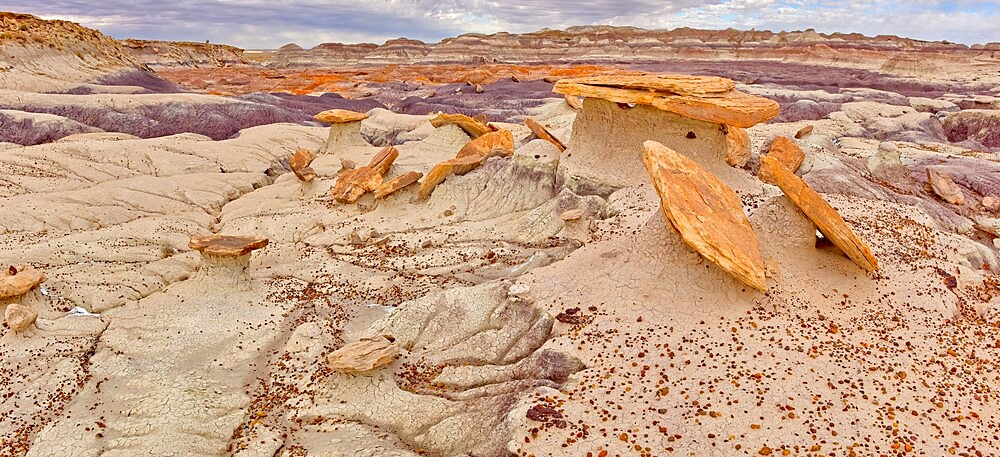 Sand Castle formations on the edge of the Red Basin in Petrified Forest National Park, Arizona, United States of America, North America - 1311-301