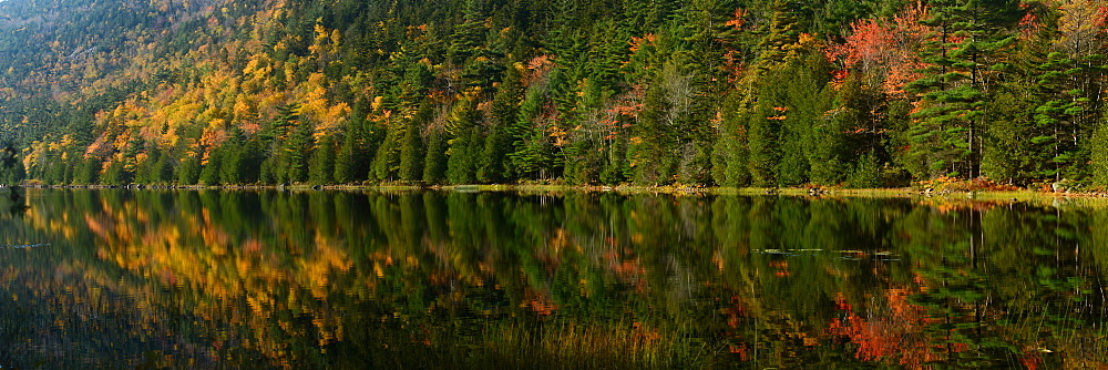 Fall foilage reflected in lake