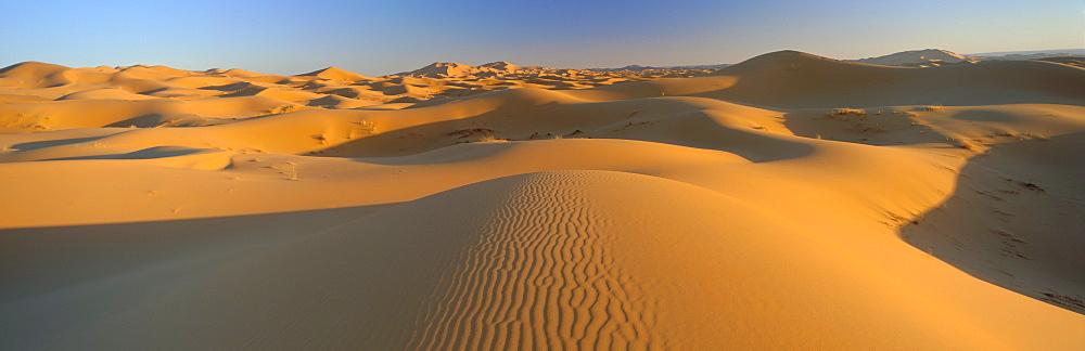 View across sand dunes of the Erg Chebbi, Sahara Desert near Merzouga, Morocco