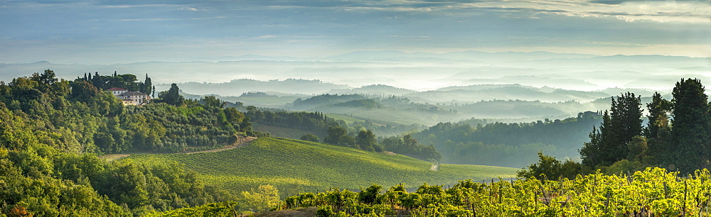 Early morning panoramic view of misty hills, near San Gimignano, Tuscany, Italy, Europe - 526-3812