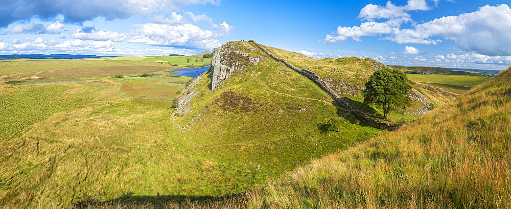 Sycamore Gap, Hadrian's Wall, UNESCO World Heritage Site, Henshaw, Hexham, Northumberland, England, United Kingdom, Europe