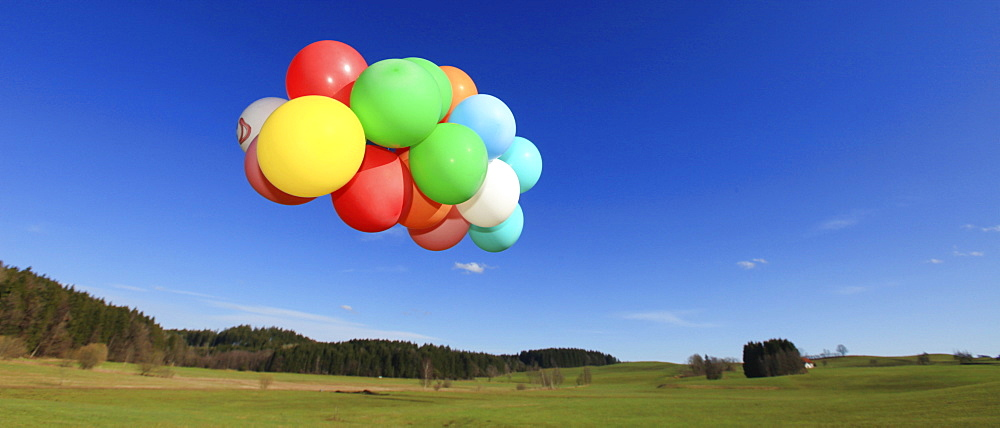 Many colourful balloons in a green landscape, Allgaeu, Germany, Europe