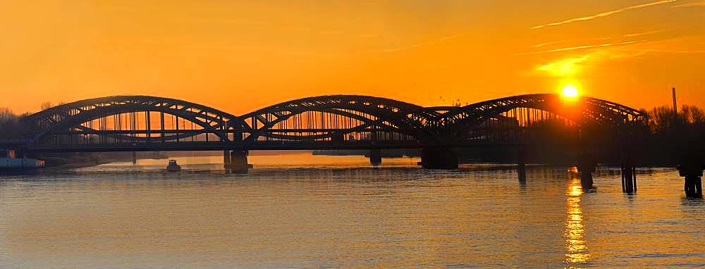 Freeport Elbe Bridge, steel bridge over the Elbe at sunset, Hamburg, Germany, Europe