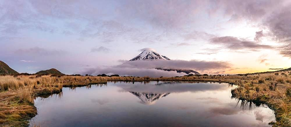 Water reflection in Pouakai Tarn Mountain Lake at sunset, Stratovolcano Mount Taranaki or Mount Egmont, Egmont National Park, Taranaki, New Zealand, Oceania