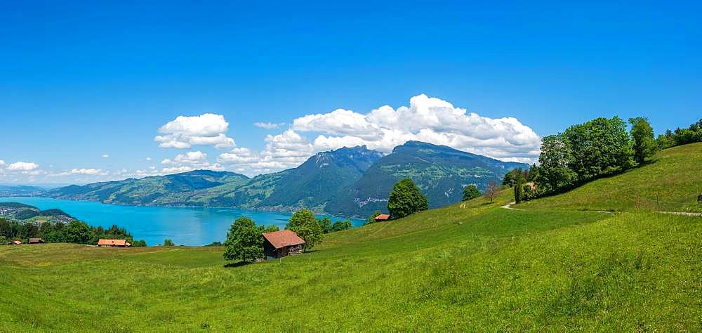 Landscape with Lake Thun, Aeschi near Spiez, Bernese Oberland, Switzerland, Europe