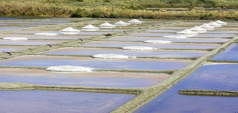 Saltworks, Salines de Guerande, Guerande, Loire-Atlantique Department, France, Europe