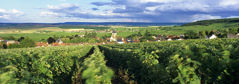 View over Champagne vineyards to the village of Villedommange from the chapel of Saint-Lie, Champagne Region, France, Europe